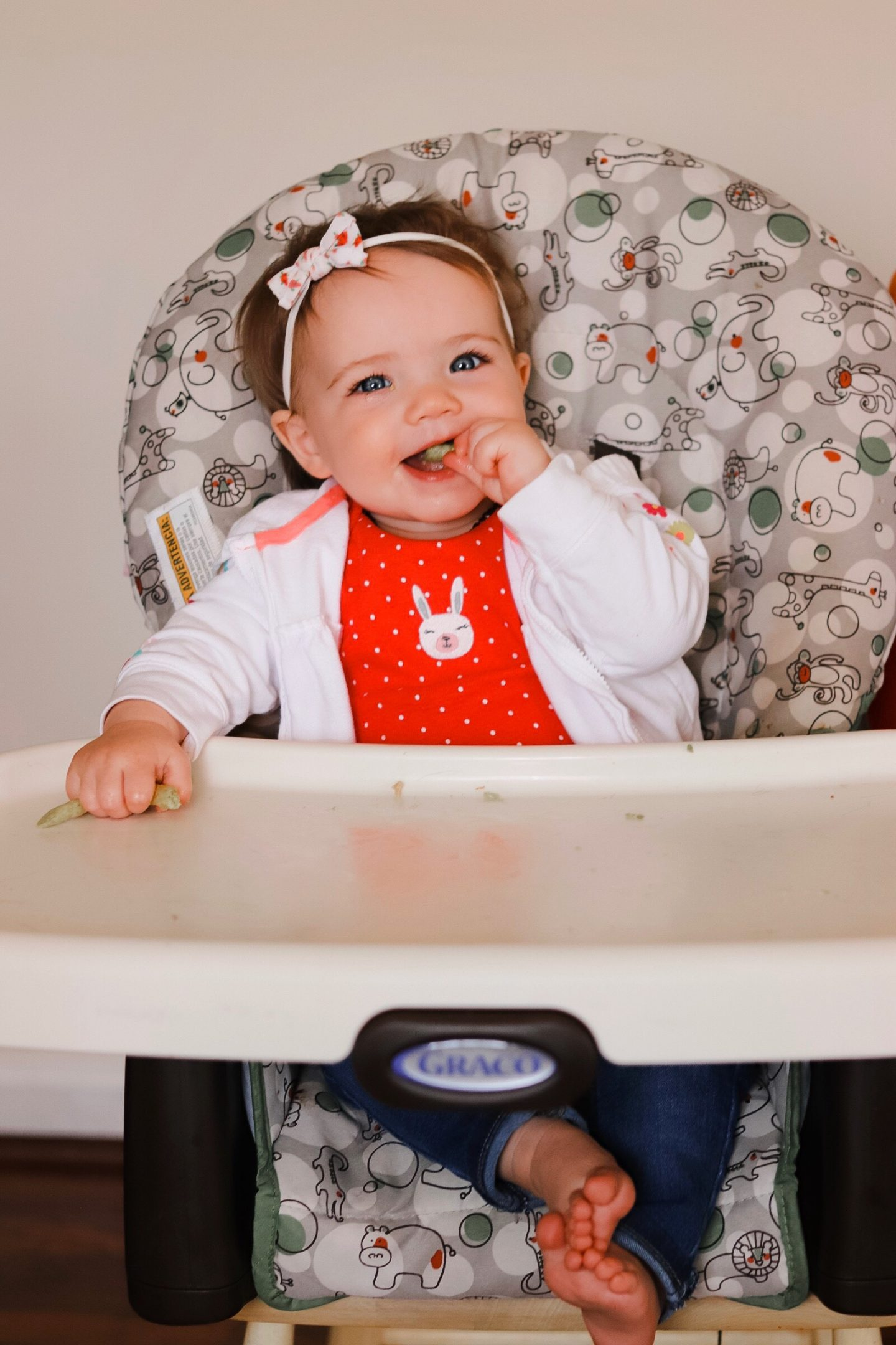 solid baby food ideas